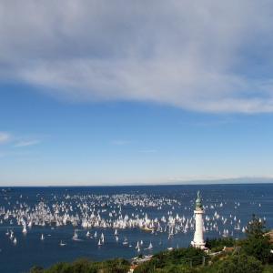 Ottobre 2014, un giorno indimenticabile... La Barcolana a Trieste