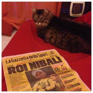 Luglio 2014, Vincenzo Nibali trionfa al Tour de France