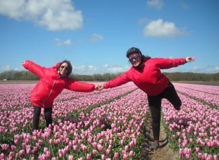 Ciclo viaggio ad Amsterdam: Tulip Mania! Giorno 3